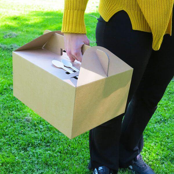 Tragebox aus Karton